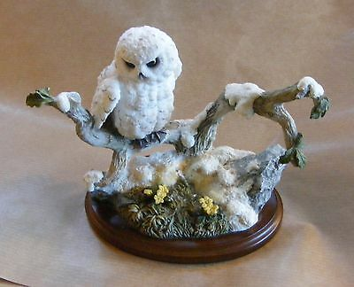 Country Artists type resin figurine of Snowy Owl (Owlet) on branch