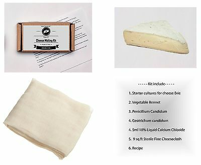 6 Litres Brie Hard Cheese Making Kit Vegetable Rennet Calcium Chloride Recipe