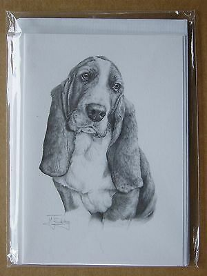 "Sale - Basset Hound Pack 4 Notelets Or Blank Greeting Cards 6 X 4.25"" - Reduced"