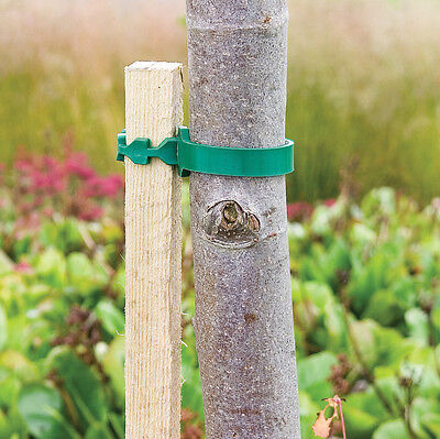 Wooden Tree Stakes 8 Feet