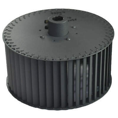 DAYTON Blower Wheel,For Use With 1C792, 202-08-3136