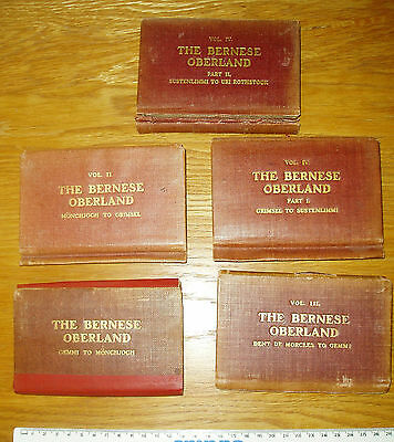 The Bernese Oberland : Conway and Coolidge's Climbers' Guides : 5 Volumes
