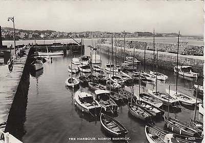 North Berwick Real Photographic Postcard, The Harbour