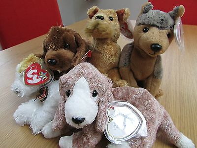 TY Beanie Babies: 5 Dogs in excellent condition