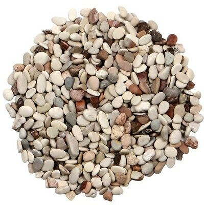 Stones Pebbles 100 Grams Of Mixed Colours 9 - 12mm  Suit Terrarium Bonsai Plants