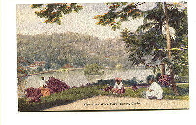 "Ceylon early 20th. Century unused colour Post Card ""View from Wace Park, Kandy"""