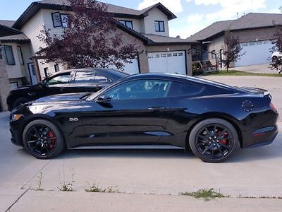 Ford: Mustang Premium Coupe 2015 GT w/ 50th Anniversary Package