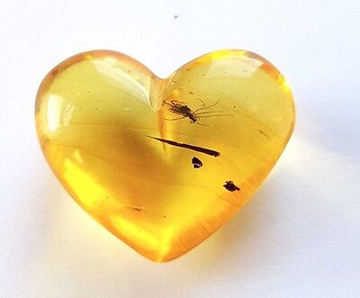 Genuine Baltic Amber Heart With Inclusion Insects