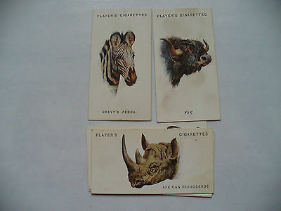 Cigarette Cards Players Wild Animal Heads,full Set