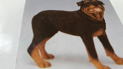 Rottweiller Ornament Figurine - Dog Studies by Leonardo - Ideal Gift  BNIB