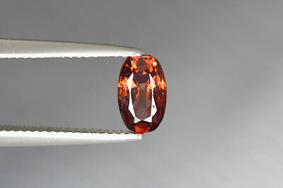 1.620 Cts Full Fire 100% Natural Earth Mine Royal Red Zircon Loose Gemstone~!!!