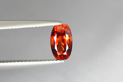 1.920 Cts Full Fire 100% Natural Earth Mine Royal Red Zircon Loose Gemstone~!!!