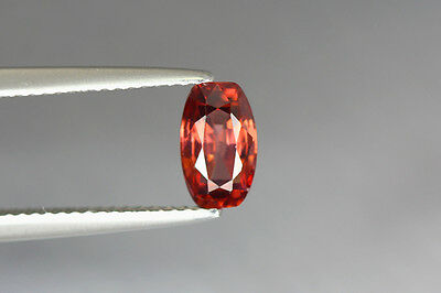 1.600 Cts Full Fire 100% Natural Earth Mine Royal Red Zircon Loose Gemstone~!!!