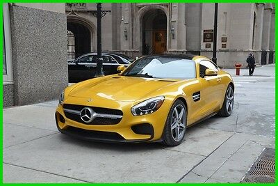 2017 Mercedes-Benz Other AMG® GT 2017 AMG GT New Turbo 4L V8 32V Manual RWD Coupe Premium