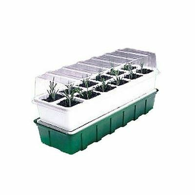 Parasene 12 cell Self Watering seed Propagator seeds seedling greenhouse window