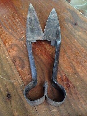 Antique Sheep Shears. Made In Japan. Quality Vintage Tool In Vg Condition.