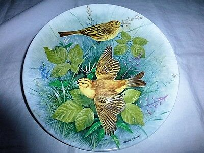 Royal Doulton Birds Of The Hedgerow X 1 Plate