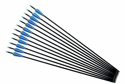 Carbon Arrows Spine 340 With Hunting Broadheads  Can Replaceable Tip