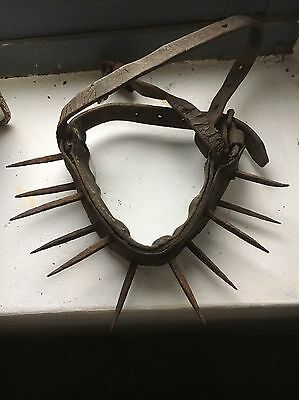 Antique Rare Spiked Dog Collar For Bear Baiting