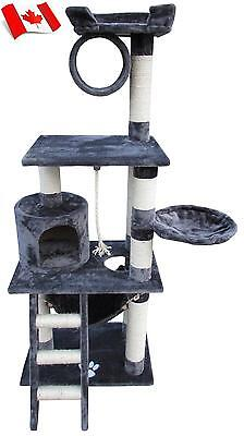 "Hamilton  Cat Tree 62"" - Littlewhiskers"