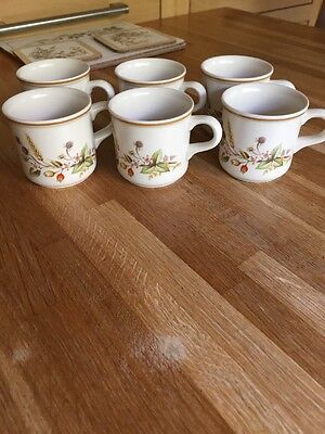6 X Marks & Spencer Harvest Expresso Coffee Cups