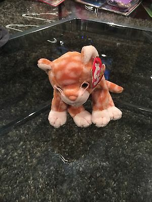 ty beanie babies Cat Amber