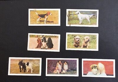 "7 ""Dogs"" Cards By Hornimans Tea"