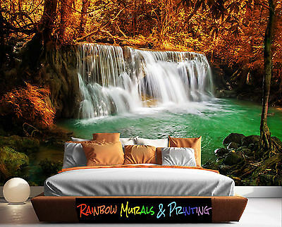 PRINTED IN AUSTRALIA Wall MURAL WALLPAPER YOUR PIC or ours REMOVABLE WATERFALL