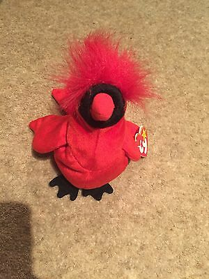 TY Beanie Baby Mac The Cardinal With Tag Very Good Condition