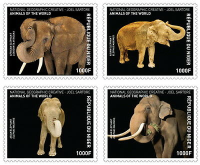 Z08 IMPERFORATED NIG16618a NIGER 2016 Elephants SPECIAL National Geographic MNH