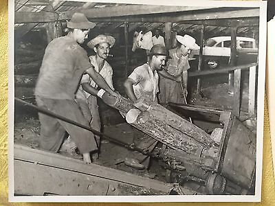 RARE CUBA CUBAN TYPICAL POVERTY WORKER CAMPESINOS CIGAR VINTAGE PHOTO 1950s
