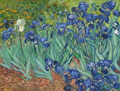 Framed Irises by Van Gogh Abstract Poster Print Painting Reproduction on Canvas