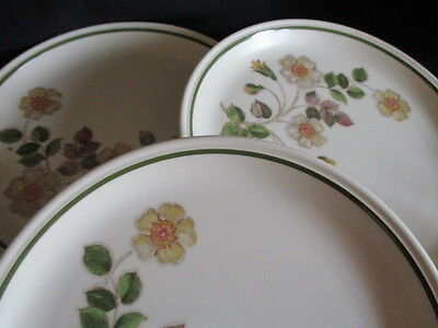 MARKS & SPENCER Autumn Leaves Dinner plates x 3 good condition