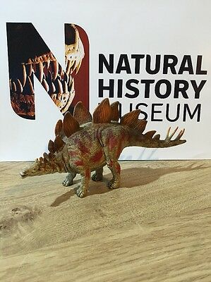 Natural History Museum Dinosaur Collection Stegosaurus, Hand Finished