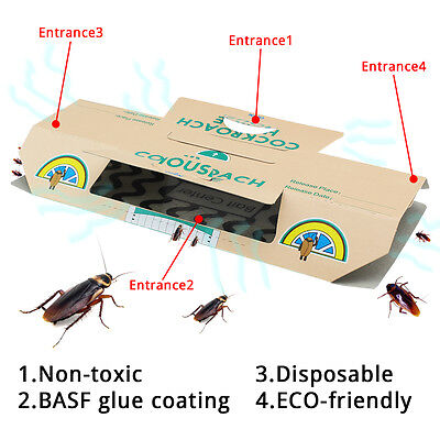 10 PCS Cockroach Traps Home Pest Control Kill Roaches Ants Spiders Adhesive Trap