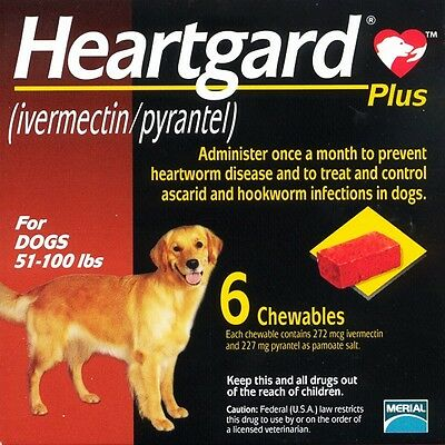 Heart Guard Plus 6 Doses Chewables for Dogs 51-100 Pounds