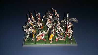 Warhammer - Dogs of War, Cursed Company   Compagnia Maledetta PRO PAINTED
