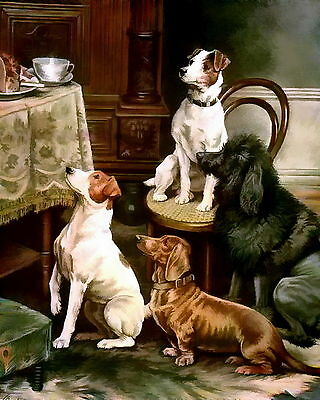 Print Canine Dog Jack Russell Fox Terrier DACHSHUND Poodle LITTLE BEGGARS Lunch
