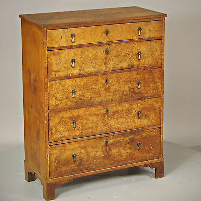 Chest of Drawers Antique, Burr Walnut - (delivery available)