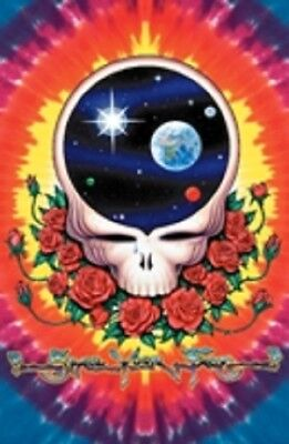 SPACE YOUR FACE GRATEFUL DEAD Psychedelic Poster
