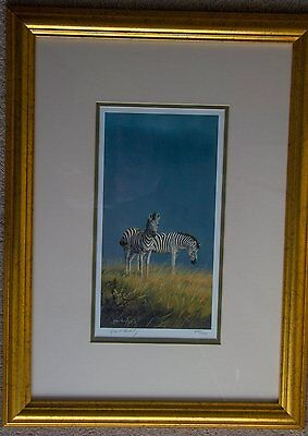 "SIGNED LTD EDITION wildlife print "" A SCENT OF RAIN "" (zebras) by GRANT HACKING"