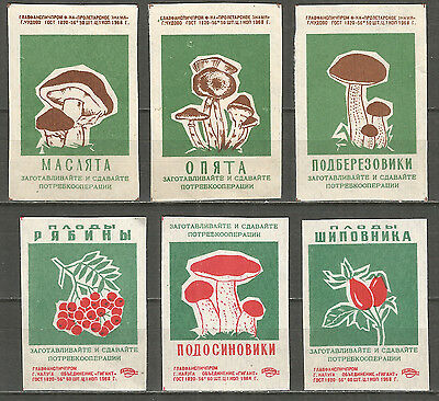Russia 1968 year, 6 matchbox labels