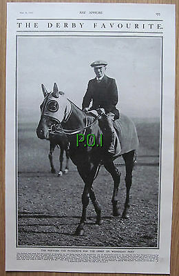 (XX11) Derby Favourite THE PANTHER Horse Racing Sir Alec Black Tattersall - 1919