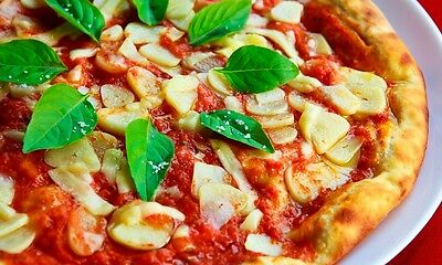 1 Pizza DOUGH Recipe w Picture Photo Image ** BUY IT NOW ** 0.99 Cent  FREE #2