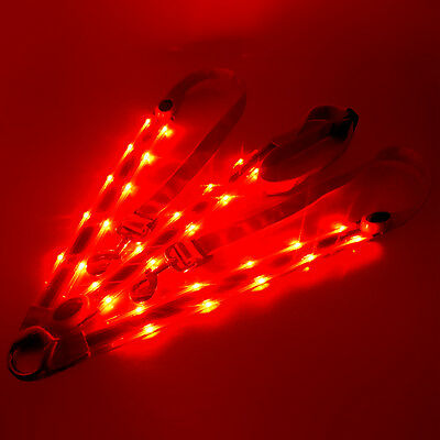 Red Led flashing reflective horse harness