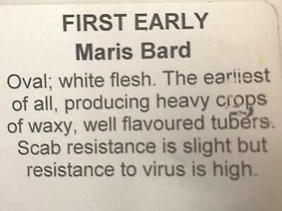 Premium 2017 MARIS BARD First Early Seed Potatoes pack of 5 or 10