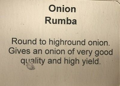 Premium RUMBA Onion Sets1/2kg pack of sets