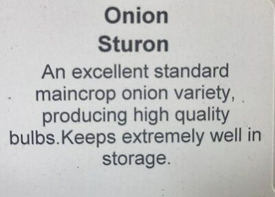 Premium STURON Onion Sets 1/2kg net