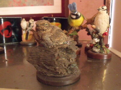 The Country Bird Collection The Nightjar