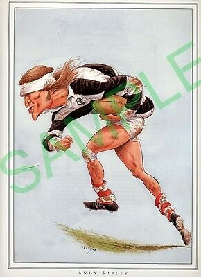 Framed picture of Andy Ripley by John Ireland, Rugby